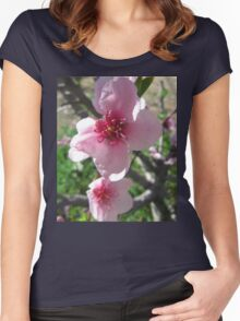 Nectarine Blossom, Mount Pleasant. Adelaide Hills. S.A. Women's Fitted Scoop T-Shirt