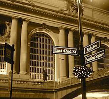 Grand Central  by dwenden