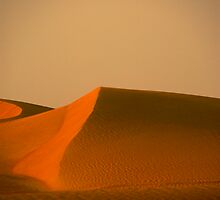 Dunes of Dubai by Shannon Benson