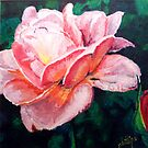 Pink Rose by Jim Phillips