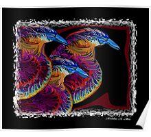 KOOKA BIRDS  Poster
