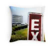 drive-in movie theater, route 66, litchfield, illinois Throw Pillow