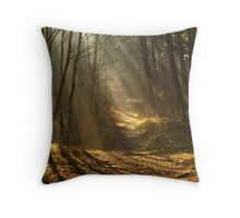 In the Stillness of the Forest Throw Pillow