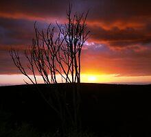 Sun setting ! by GRAEMEGM