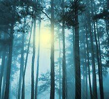BLUE MORNING - BLUE DAY by webdog