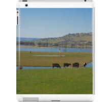 Peaceful country scene iPad Case/Skin