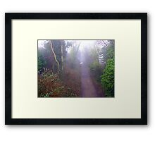 Foggy Path Framed Print