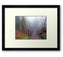 Steps in the Fog Framed Print