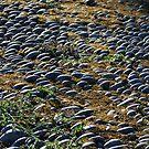 Cobblestones Garrettstown by Larry149