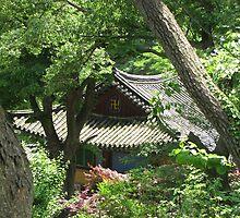 Hidden Buddist Temple by Debbie Montgomery