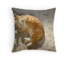 Hey Ginger Throw Pillow