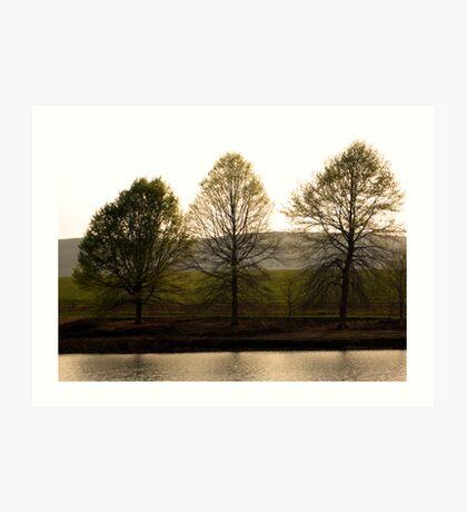 Three Seasons on a Lake Art Print