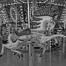 Horses Go Round by angelandspot