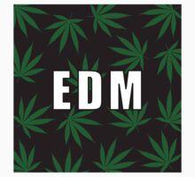 EDM by Taylor Miller