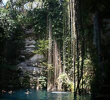 Il Kil Cenote, Chichen Itza, Mexico by Allen Lucas