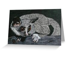 The Lesser Bush Baby Greeting Card