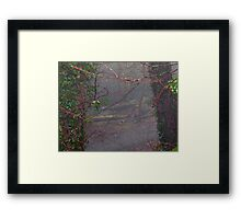 A gap in the trees Framed Print