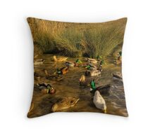 Feeding Time.... Throw Pillow