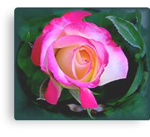 """""""She who has roses in her garden...must surely have roses in her heart.""""  Canvas Print"""