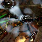 "ART by bec ""Bubbles on the Creek"" by ARTbybec"