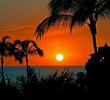 Sunset Over Puerto Vallarta by Swede