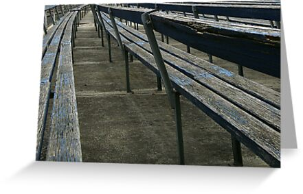 Arden street,North Melbourne, Football Ground by Rosina  Lamberti