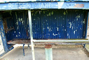 Arden street,North Melbourne, Football Ground-REEFER  STAND by Rosina  Lamberti