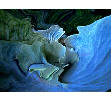 blue stag Photographic Print