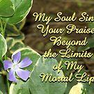 Periwinkle Praise by Debbie Sickler