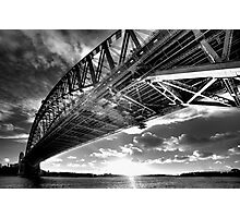 Underbelly Photographic Print