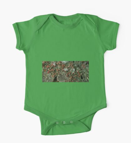 0055 - HDR Panorama - British Soldiers One Piece - Short Sleeve