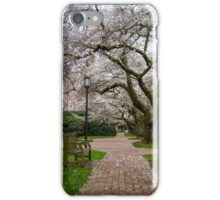 Cherry Trees Along a Path iPhone Case/Skin