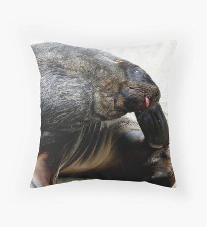 Oh that feels so, so good! - Sea Lion - Rapoka - Dunedin Throw Pillow