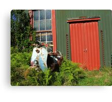 Waiting for someone to hop on and ride in the wind! - Christchruch - New Zealand Canvas Print