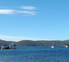 Port Arthur Harbour, Port Arthur, Tasmania, Australia by Philip Johnson