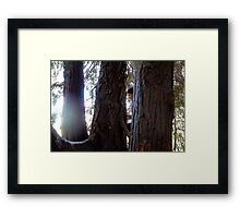 Woman & The Giant of Nature - NZ - Southland Framed Print