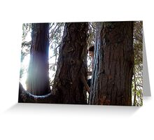 Woman & The Giant of Nature - NZ - Southland Greeting Card