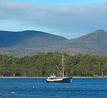 At Anchor  - Port Arthur, Tasmania, Australia by Philip Johnson