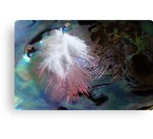 Feather & Pearl - Southland - New Zealand Canvas Print