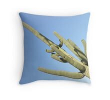 ARIZONA IS VERY HAPPY TO SEE YOU ! Throw Pillow