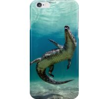 Dangerous Approach iPhone Case/Skin
