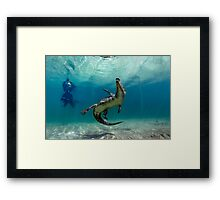 Dangerous Approach Framed Print