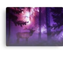 The Enchanted Forest'... Canvas Print