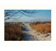 Walk path in the sand Art Print