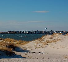 Sand dune,Jones Beach,New York by efimpodovich