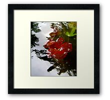Days Like These Framed Print