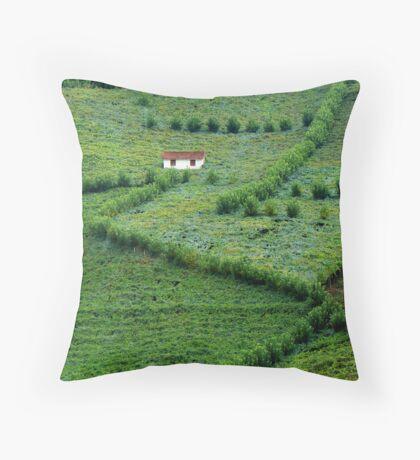 vale dos vinhedos Throw Pillow