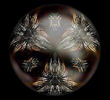 Hybrid Sphere Flore Pirineo ABDiff by Neil Montgomery