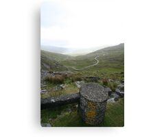 Snow Marker at Healy Pass Canvas Print
