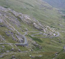 Road To Healy Pass by Larry149